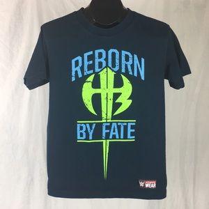 Free with Bundle | Hardy Boyz Reborn By Fate WWE